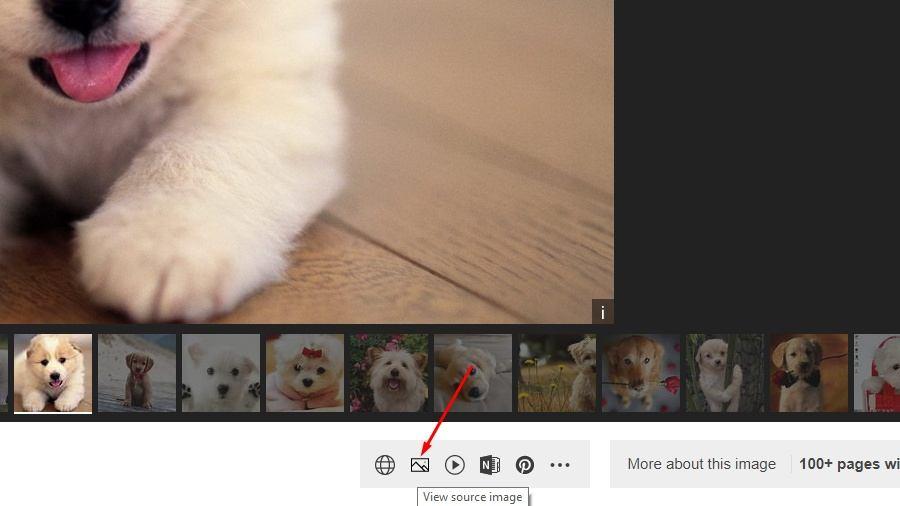 Tìm kiếm Hình ảnh của Google Xem Hình ảnh Thay thế 1 Bing