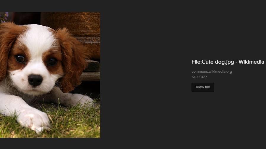 Tìm kiếm hình ảnh của Google Xem hình ảnh thay thế 2 DuckDuckGo